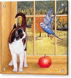 Bird Watching Acrylic Print by Ditz