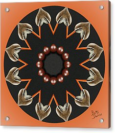 Acrylic Print featuring the photograph Bird With Egg Kaleidoscope by Betty Denise