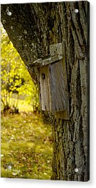 Acrylic Print featuring the photograph Birdhouse by Alex King