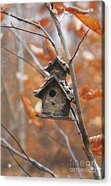 Acrylic Print featuring the photograph Birdhouse Hanging On Branch With Leaves by Sandra Cunningham
