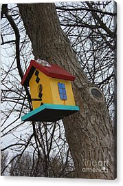 Birdhouse Of Color Acrylic Print by Margaret McDermott
