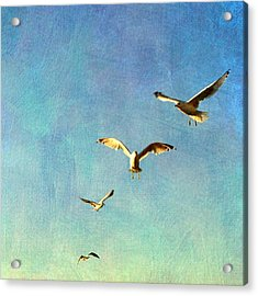 Birds Above Acrylic Print