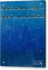 Birds And Fish Acrylic Print by Stefanie Forck