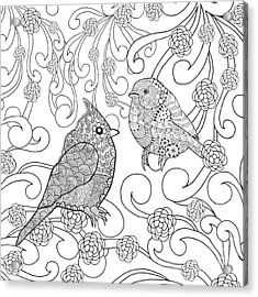 Birds Coloring Page. Animals. Hand Acrylic Print