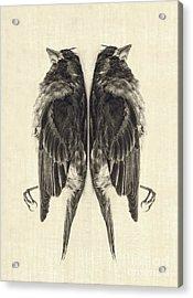 Mirror Mirror Acrylic Print by Edward Fielding