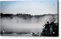 Birds Fly Above The Steamy Lake Acrylic Print