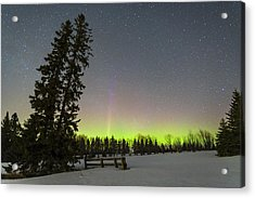 Bird's Hill Aurora One Acrylic Print