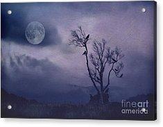 Birds In The Night Acrylic Print