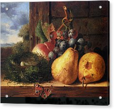 Birds Nest Butterfly And Fruit Acrylic Print by Edward Ladell