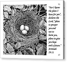 Bird's Nest With Scripture Acrylic Print by Janet King