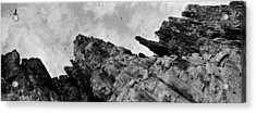 Birds Nesting In Cliffs, Norway Acrylic Print by Panoramic Images