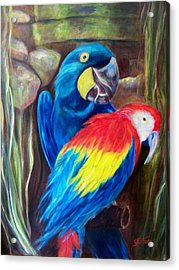 Bird's Of A Feather, Macaws Acrylic Print