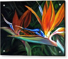 Birds Of Paradise Acrylic Print by LaVonne Hand