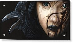 Birds Of Prey- Raven Acrylic Print