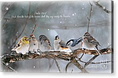 Birds On A Branch Acrylic Print by Lila Fisher-Wenzel