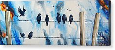 Birds On Barbed Wire Acrylic Print