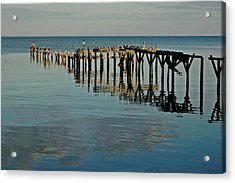 Birds On Old Dock On The Bay Acrylic Print by Michael Thomas