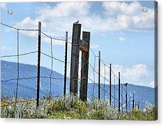 Birds On The Fence Acrylic Print