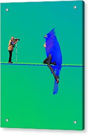 Acrylic Print featuring the painting Birdwatcher by David Mckinney