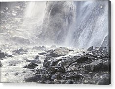 Acrylic Print featuring the photograph Birth Of A River by Colleen Williams