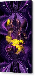 Acrylic Print featuring the photograph Birth Of Universe by Robert Kernodle