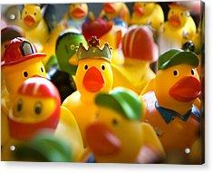 Birthday Ducks Acrylic Print