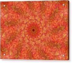 Birthing Mandala 17 Acrylic Print