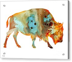 Bison 5 Acrylic Print by Watercolor Girl