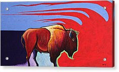 Bison In The Winds Of Change Acrylic Print by Joe  Triano