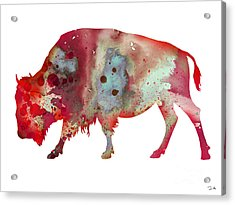 Bison Acrylic Print by Watercolor Girl