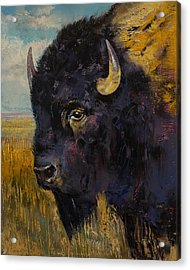 Bison Acrylic Print by Michael Creese