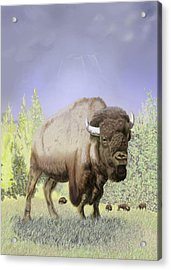 Acrylic Print featuring the digital art Bison On The Range by Thomas J Herring