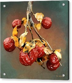Bittersweet Memories Acrylic Print by RC DeWinter