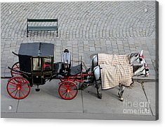 Black And Red Horse Carriage - Vienna Austria  Acrylic Print by Imran Ahmed