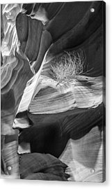 Black And White Antelope Canyon Tumbleweed  Acrylic Print by Susan Schmitz