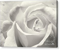 Black And White Curves Acrylic Print by Sabrina L Ryan