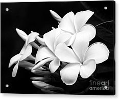 Black And White Lightning Acrylic Print