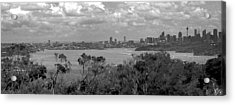 Acrylic Print featuring the photograph Black And White Sydney by Miroslava Jurcik