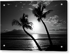 Black And White Tropical Acrylic Print by Pierre Leclerc Photography