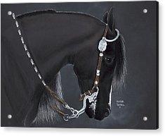 Black Arabian Acrylic Print by Heather Gessell