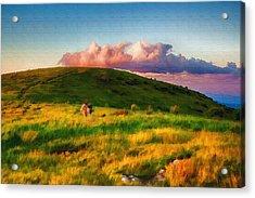 Black Balsam Hikers Acrylic Print by John Haldane