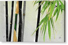 Black Bamboo Sarasota IIi Acrylic Print