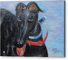 Black Beauty Acrylic Print by Lucille  Valentino