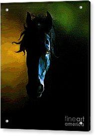 Black Beauty Acrylic Print by Robert Foster