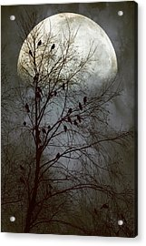 Black Birds Singing In The Dead Of Night Acrylic Print