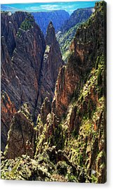 Black Canyon Of The Gunnison National Park I Acrylic Print