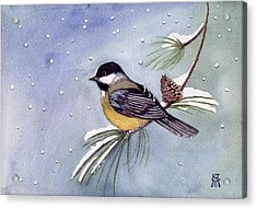 Acrylic Print featuring the painting Black-capped Chickadee by Katherine Miller