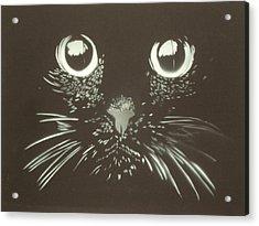 Black Cat Acrylic Print by Christopher Golding