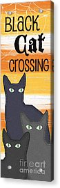 Black Cat Crossing Acrylic Print by Linda Woods