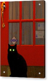 Black Cat Red Door Acrylic Print by DerekTXFactor Creative